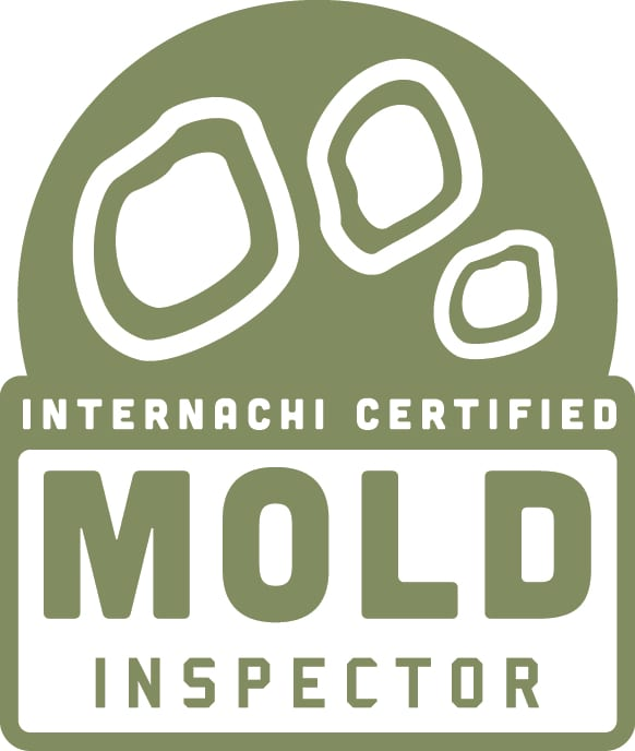 Solano County Mold Inspection
